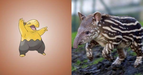 Similitud de especie pokémon Drowzee en la vida real