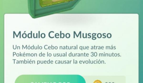 modulo-cebo-musgoso