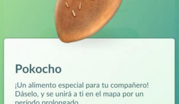 pokocho-pokemon-go
