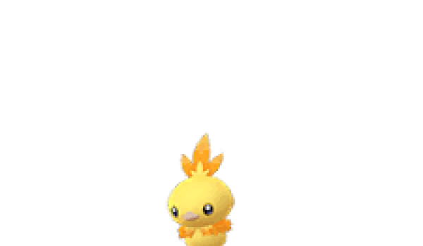 torchic-shiny
