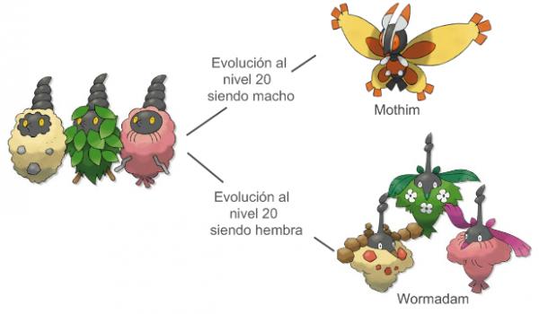 wormadan-formas