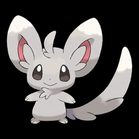 Minccino Pokemon Go