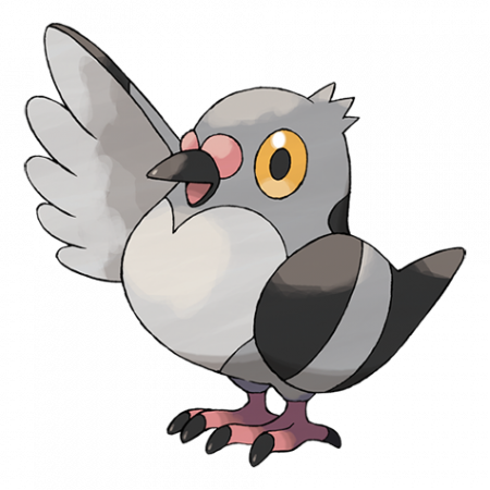 Pidove Pokemon Go